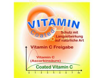 Vit-C Langzeit 120 Kapseln vegetarisch 500mg